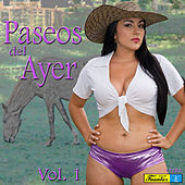 Paseos del Ayer, Vol. 1 by Various Artists