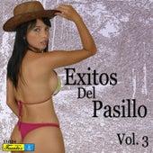 Exitos de Pasillo, Vol. 3 by Various Artists