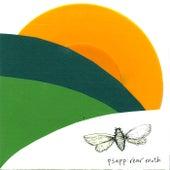 Rear Moth by Psapp