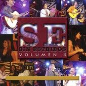 Sin Estribos (Vol. 4) by Various Artists