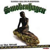 Smokenhagen Sessions Vol 2 by Various Artists