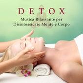 Detox - Musica Rilassante per Disintossicare Mente e Corpo by Various Artists