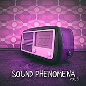 Sound Phenomena, Vol. 3 by Various Artists