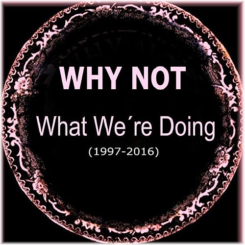 What We're Doing by Why Not