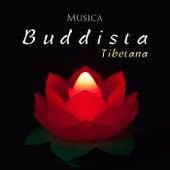 Musica Buddista Tibetana by Various Artists