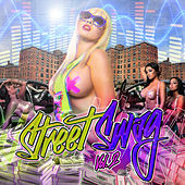 Street Swag, Vol. 2 von Various Artists