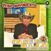 Puro Movimiento by Aniceto Molina