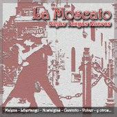 Viejos Tangos Nuevos by Moscato