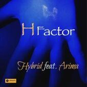 H Factor von Hybrid