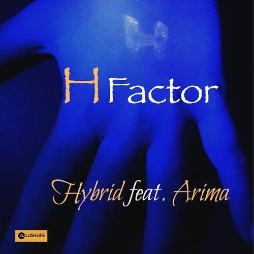 H Factor by Hybrid