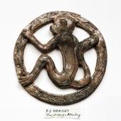 The Orange Monkey by PJ Harvey