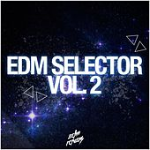 EDM Selector, Vol. 2 by Various Artists