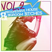 Progressive House & Bigroom Bitches, Vol. 2 by Various Artists