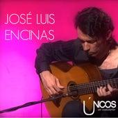 Únicos en Concierto. José Luis Encinas (En Directo) by José Luis Encinas