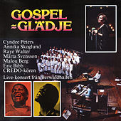 Gospel - Glädje by Various Artists
