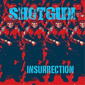 Insurrection by Shotgun