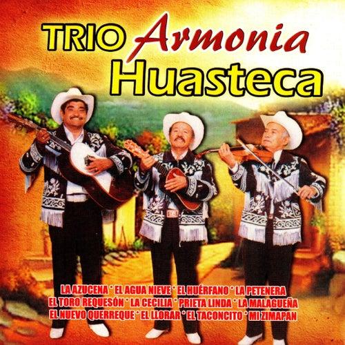 Trio Armonia Huasteca by Trio Armonia Huasteca
