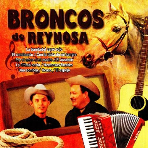 Broncos de Reynosa by Los Broncos De Reynosa