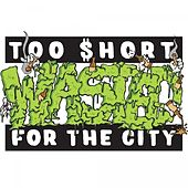 Wasted - Single by Too Short