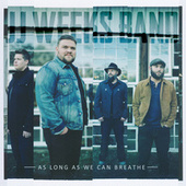 As Long As We Can Breathe by JJ Weeks Band