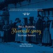 Slovenské spevy / Slovak Songs by Iva Bittova