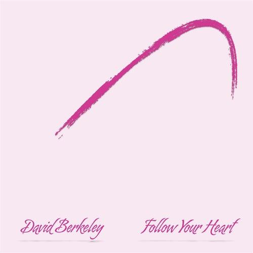 Follow Your Heart by David Berkeley