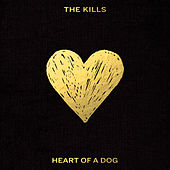 Heart of a Dog by The Kills