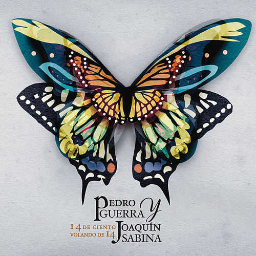 14 de Ciento Volando de 14 by Pedro Guerra