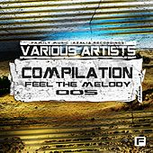 Feel The Melody 005 - EP by Various Artists