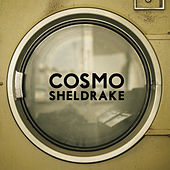 The Moss by Cosmo Sheldrake
