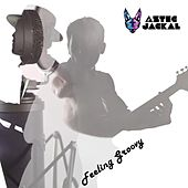 Feeling Groovy EP by Aztec Jackal