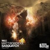 Sasquatch by Matt Bowdidge