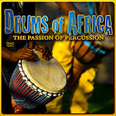 Drums of Africa: The Passion of Percussion by Various Artists