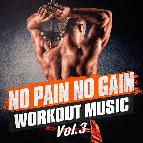 No Pain No Gain Workout Music, Vol. 3 by Ibiza Fitness Music Workout