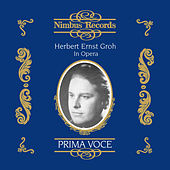 Herbert Ernst Groh in Opera by Various Artists