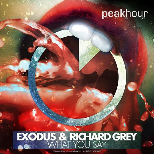 What You Say by Exodus