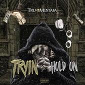 Tryin Hold On (feat. Mustafa) - Single by Tru