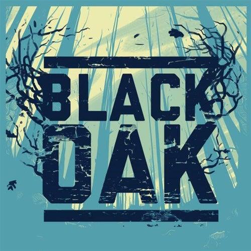 Breaking Point by Black Oak