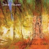 Dangerous Times by Jake Holmes