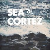 Sea of Cortez by The Sea of Cortez