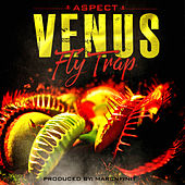 Venus Fly Trap by Aspect