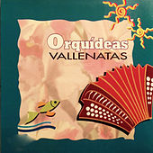 Orquídeas Vallenatas by Various Artists