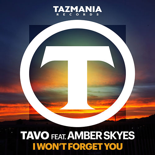 I Won't Forget You by TAVO