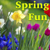 Spring Fun von Various Artists