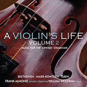 A Violin's Life, Volume 2 by Various Artists