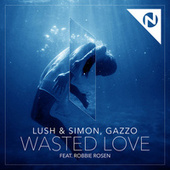 Wasted Love by Lush & Simon