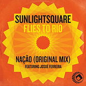 Flies to Rio by Sunlightsquare