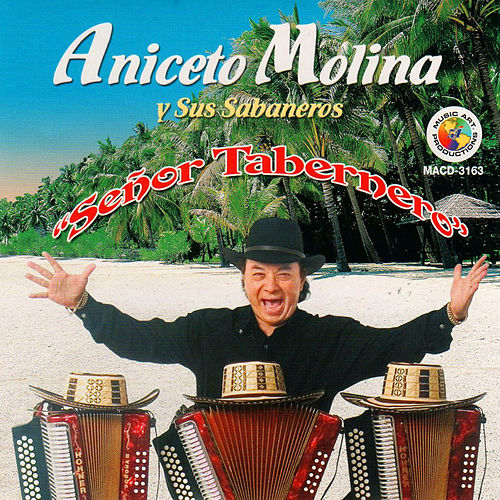 Senor Tabernero by Aniceto Molina