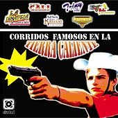 Corridos Famosos en la Tierra Caliente by Various Artists