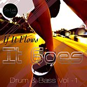 If It Flows It Goes, Vol. 1 by Various Artists